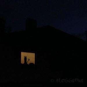 halloween diy decoration trick or treat window monsters