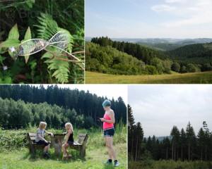 DJH Burg Bilstein Sauerland Urlaub mit Kindern Familienurlaub in der Jugendherberge wandern mit Kindern Wanderweg Natur Berge