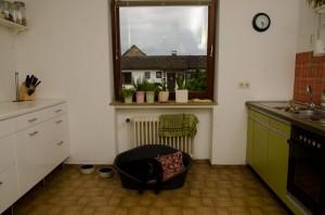 Mischung als alt und neu 70-ziger Jahre Haus 70er Jahre Küche Simatic grün vor dem Umbau