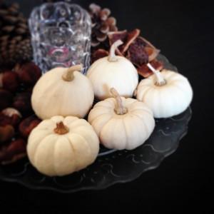 Herbstdeko dekoration Kürbis weißer Kürbis