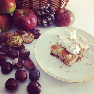 Apfel Walnuss kuchen Rezept schneller Apfelkuchen Herbstrezept Backrezept