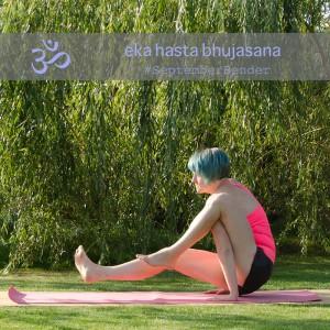 Yoga Kraft Ganzkörper Arme Balance Elephant trunk eka hasta bhujasana Yogapose