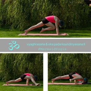 Yoga Kraft Ganzkörper Arme Balance flying lizard  Yogapose