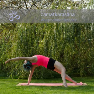 Yoga Kraft Ganzkörper Arme Balance wild thing rock star pose camatkarasana rückbeuge backbend Yogapose