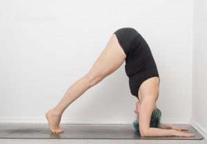Handstand, how to handstand, wie mache ich einen Handstand, Armbalance, Inversion, Umkehrhaltung, Yoga, tutorial, Delphin, dolphin pose, Schulteröffner