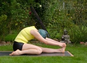 Yoga, Asana, yogaposition,Vorwärtsbeuge, marichyasana, seated forward bend, heron leg