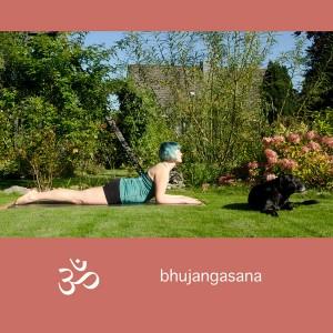 Yoga, Yogini, Asana, Cobra, sphinx, bhujangasana, Rückbeuge, backbend