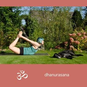 Yoga, Yogini, Asana,, Rückbeuge, backbend, bogen, bow, dhanurasana