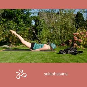 Yoga, Yogini, Asana,, Rückbeuge, backbend, heuschrecke, locust, salabhasana