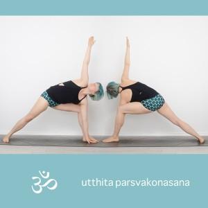 Yoga, Yogapositionen, yogi, Pose, asana, Standing pose, Stehende Position, extended side angle, gestreckter winkel, utthita parsvakonasana