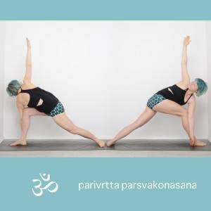 Yoga, Yogapositionen, yogi, Pose, asana, Standing pose, Stehende Position, revolved extended side angle, gedrehter gestreckter winkel, parivrttha parsvakonasana