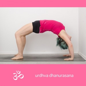 urdhva dhanurasana, wheel, backbend, yoga, yogapose, yogi, asana, rückbeuge, rad