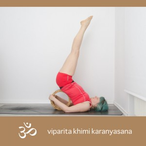Yoga, Yogaposition, Asana, Yogi, Inversion, Umkehrhaltung, Schulterstand, shoulderstand, unsupported shoulderstand, ungestützter Schulterstand, sarvangasana, Yogarad, dharmayogawheel