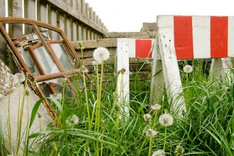 Garten, Naturgarten, Unkraut, unschöne Ecken, naturnah, Gras