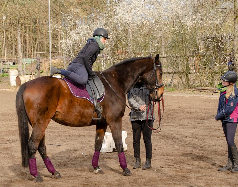 reiten, Reiter, Pferd, Reiterhof, Reitermädchen, Reitanfänger