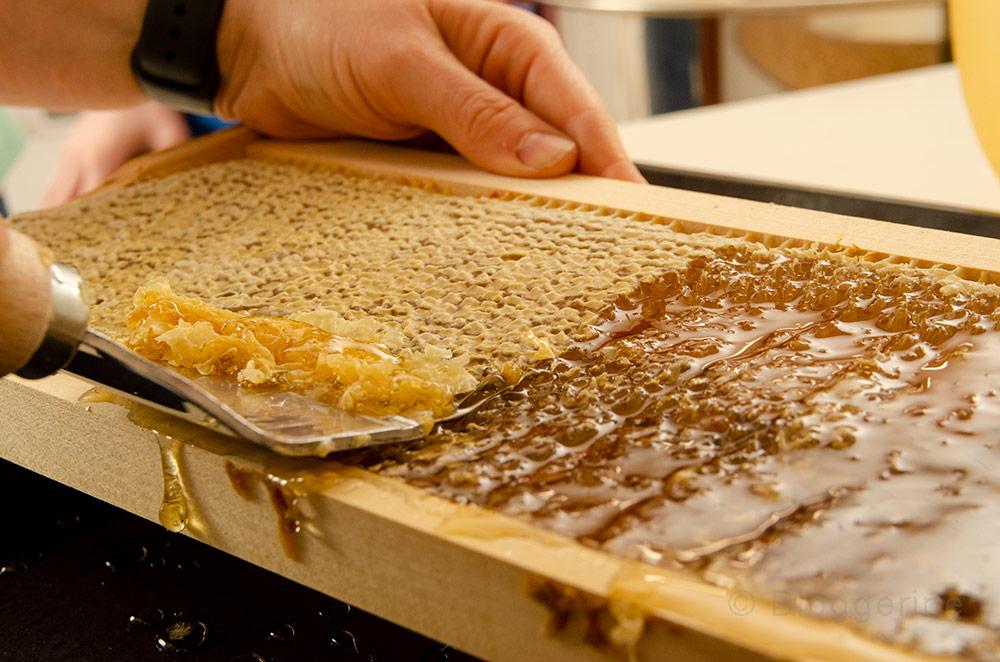 Hobbyimker, Imker, Honig, Bienen, Honigernte, Waben, Honigschleuder, Rähmchen, entdeckeln, Pollencrew