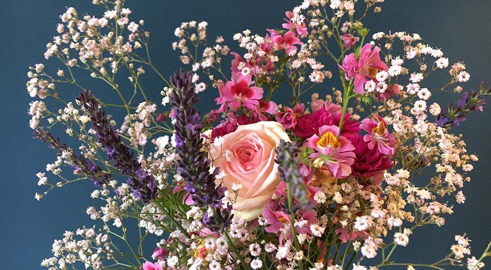 Garten, Blumen, Bauernorchideen, pink, weiß, Bauerngarten, Blumensaat, Blumenstrauß, Bauerngarten, Schleierkraut