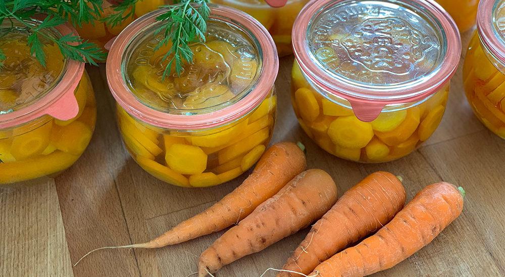 Karotte, Möhre, Mohrrübe, Möhrenkraut, Gemüsegarten, Selbstversorger, Wurzelgemüse, einkochen, einlegen, lagern