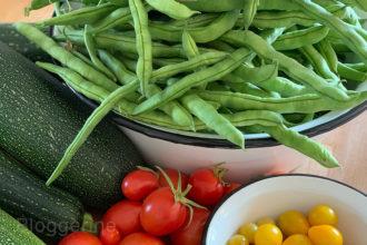 Bohnen, Gartenbohnen, Stangenbohnen, Gemüse, Gemüsegarten, Selbstversorger, Zucchini, Tomaten