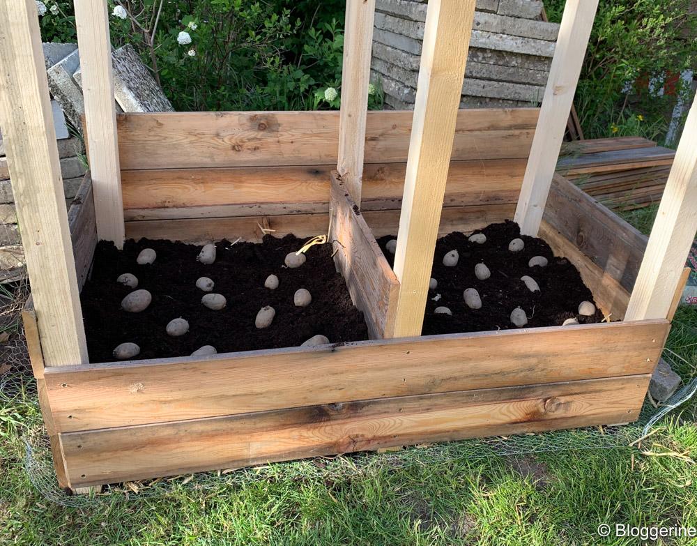 Kartoffeln im Karoffelturm