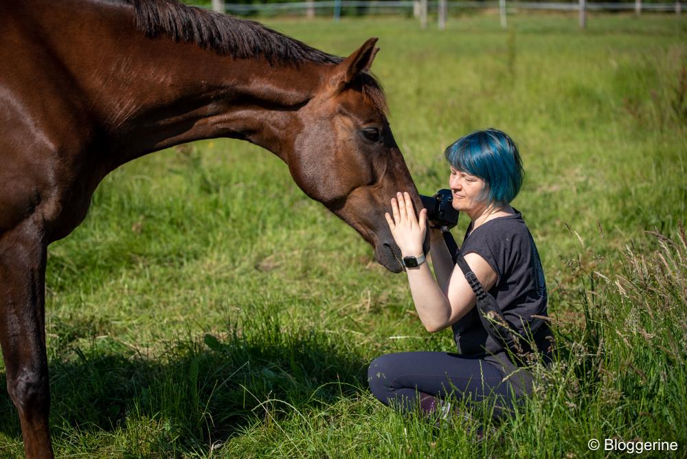 Ostwind und Aline auf der Weide
