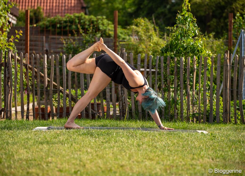 Yogapose dreibeiniger Hund